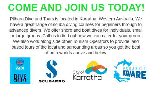 Pilbara Dive and Tours