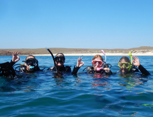 Learn to Scuba Dive in KARRATHA, WESTERN AUSTRALIA